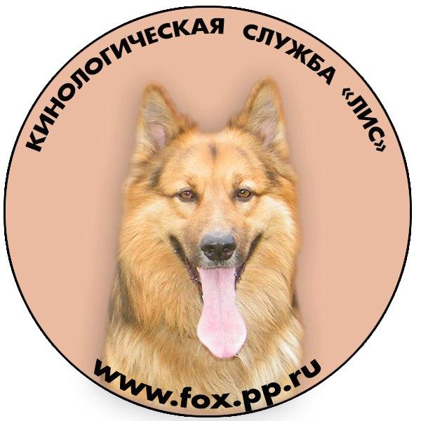 """логотип компании Кинологическая служба """"ЛИС"""""""