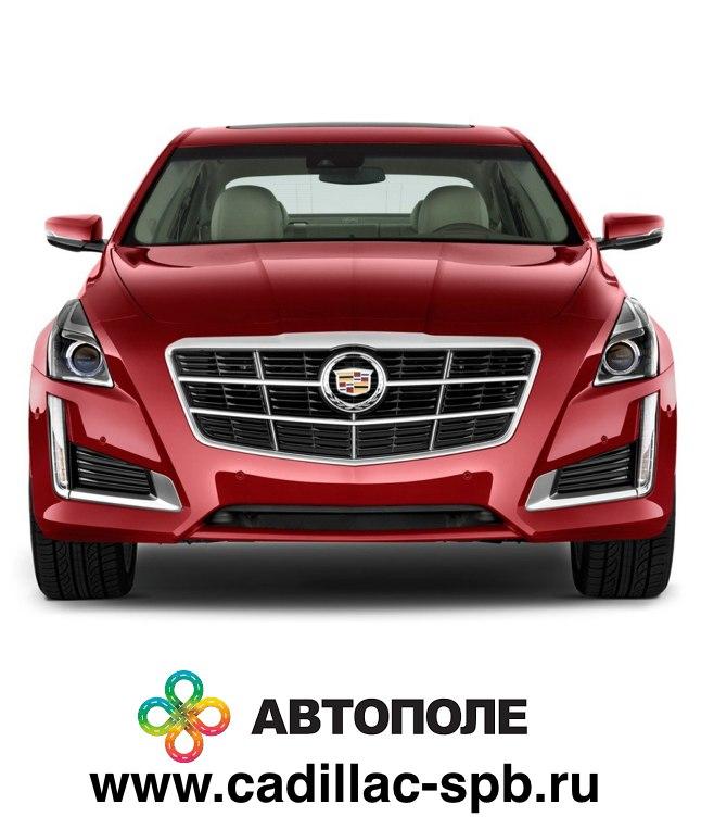 """логотип компании Официальный дилер Cadillac – """"Автополе"""""""