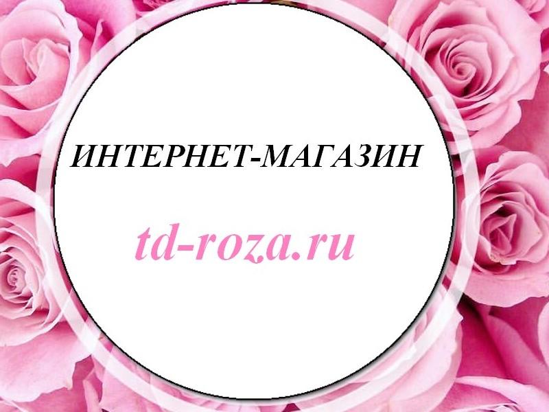 логотип компании ИНТЕРНЕТ-Магазин