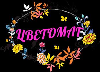 логотип компании Цветомаг
