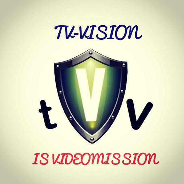 логотип компании ООО ТВ ВИЖН – Интернет-магазин систем безопасности
