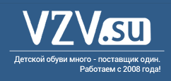 логотип компании ООО «ВЗВ»