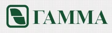 логотип компании Гамма Плюс